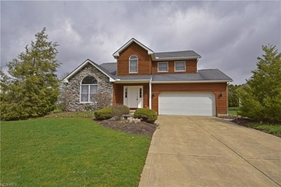 115 Clevidence Ct, Seville, OH 44273 - #: 3986437