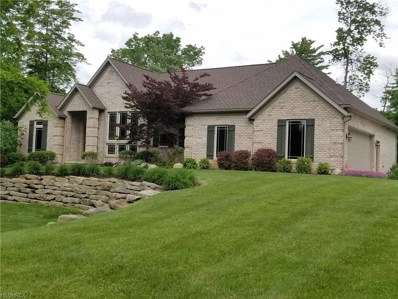 321 Mount Pleasant Rd, Clinton, OH 44216 - #: 3991133
