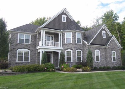 3052 Ansonia Dr, Twinsburg, OH 44087 - #: 3991356