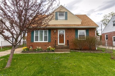 225 E 327th St, Willowick, OH 44095 - #: 3991556