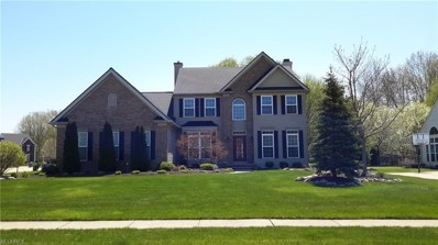 31741 Leeward Ct, Avon Lake, OH 44012 - #: 3997591