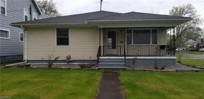 2806 Park Dr, Lorain, OH 44052 - #: 3999801