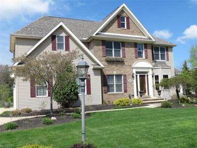 9562 Amberwood Ct, Broadview Heights, OH 44147 - #: 4001544