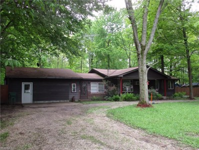 5096 Lakeview Dr, Andover, OH 44003 - #: 4001804