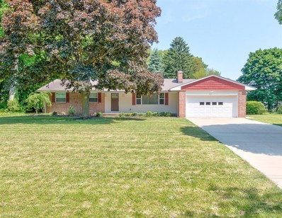 4381 Magnolia Ave, Perry, OH 44081 - #: 4003547