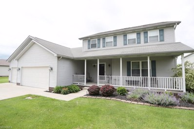 10220 Midway Dr, New Middletown, OH 44442 - #: 4005152