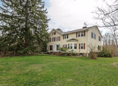 12671 Pearl Rd, Hambden, OH 44024 - #: 4007156