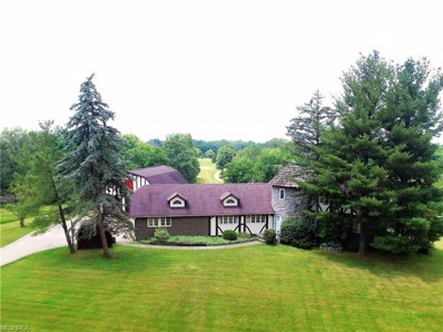 1486 Metzger Rd, Valley City, OH 44280 - #: 4009849