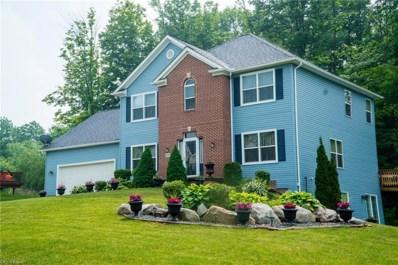 6336 Stoneridge Dr, Streetsboro, OH 44241 - #: 4011580