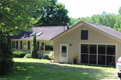 6604 1st Ave, Andover, OH 44003 - #: 4012868