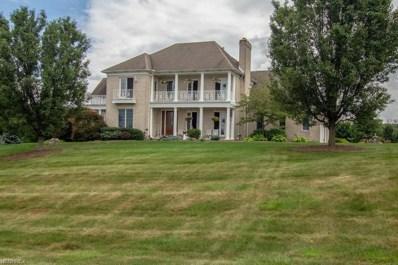 1552 Lantern Hill Dr, Wadsworth, OH 44281 - #: 4013516