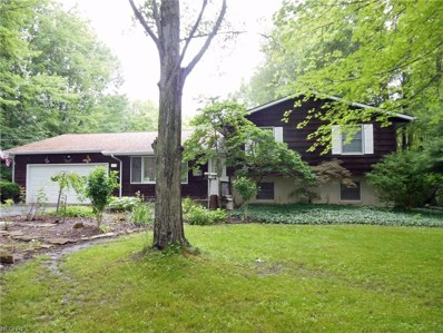 6675 River Road, Madison, OH 44057 - #: 4013661