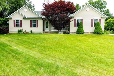 169 Sandstone Dr, Painesville Township, OH 44077 - #: 4013766