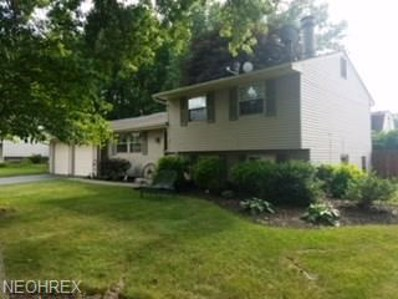 1382 Northfield, Mineral Ridge, OH 44440 - #: 4014297