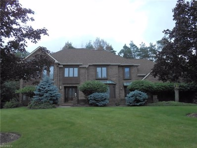 8501 Countryview Dr, Broadview Heights, OH 44147 - #: 4015141
