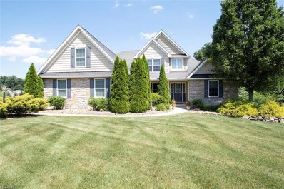 2303 Catherines Overlook Dr, Medina, OH 44256 - #: 4015752