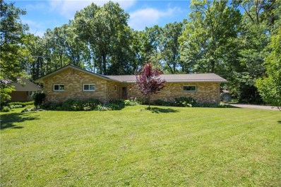 281 Moreland Dr, Canfield, OH 44406 - #: 4016371