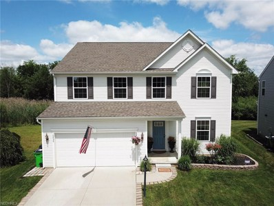 10434 Joyce Ct, Reminderville, OH 44202 - #: 4016418