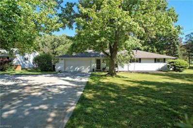 6999 Wilson Mills Rd, Mayfield Village, OH 44143 - #: 4016885