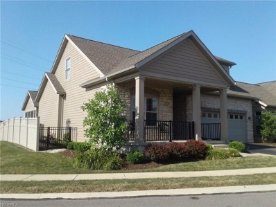541 Quarry Lakes Dr, Amherst, OH 44001 - #: 4018860