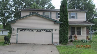 3010 S Meridian Rd, Youngstown, OH 44511 - #: 4020695