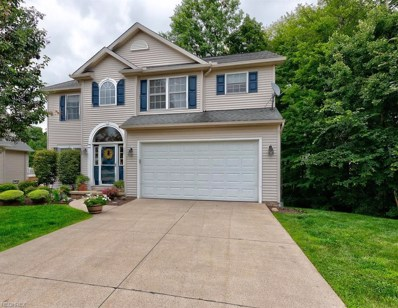 15143 Timber Ridge Dr, Middlefield, OH 44062 - #: 4021885