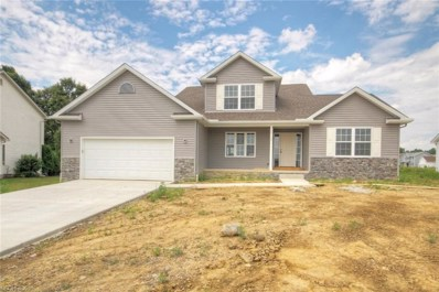 10380 Carrousel Woods Dr, New Middletown, OH 44442 - #: 4022047