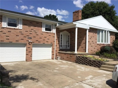 48615 Lakeview Cir, East Liverpool, OH 43920 - #: 4023133