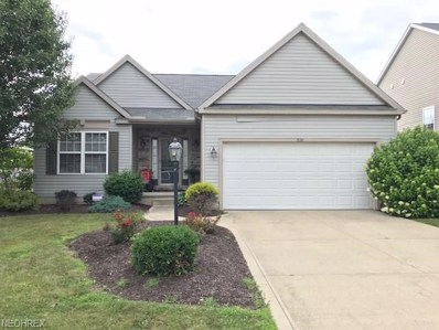 876 Queens Gate Way, Wadsworth, OH 44281 - #: 4023599