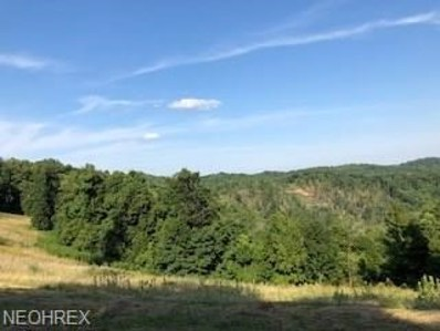 McKimmie Ridge, Other, WV 26167 - #: 4023785