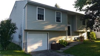 318 Stewart Ave NORTHWEST, Warren, OH 44483 - #: 4024223