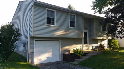 318 Stewart Ave NORTHWEST, Warren, OH 44483 - #: 4024223