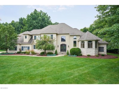 79 Taylor James Blvd, Sharon, OH 44281 - #: 4025046