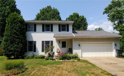 184 Southpark Dr, Wadsworth, OH 44281 - #: 4025126