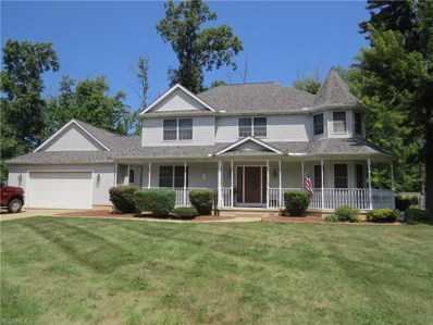 859 Timberview Dr, Amherst, OH 44001 - #: 4025439