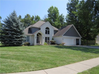 785 Blossom Dr, Amherst, OH 44001 - #: 4025441