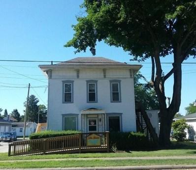 263 E McConkey St, Shreve, OH 44676 - #: 4026780
