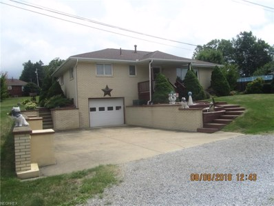 49098 Foulks Dr, East Liverpool, OH 43920 - #: 4027980