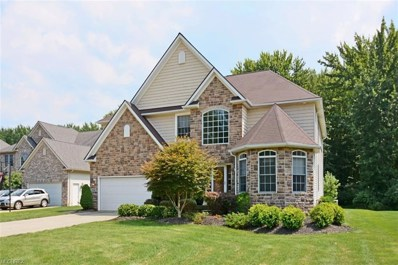 27083 Waterside Dr, Olmsted Township, OH 44138 - #: 4028388
