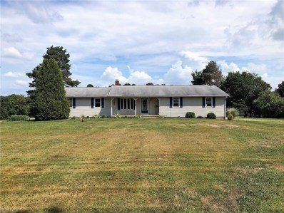 19248 State Route 62, Beloit, OH 44609 - #: 4028469