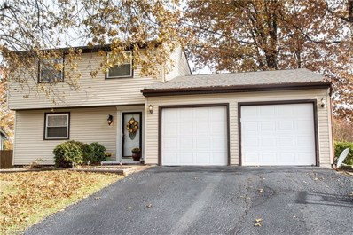 1259 Woodledge Dr, Mineral Ridge, OH 44440 - #: 4029313