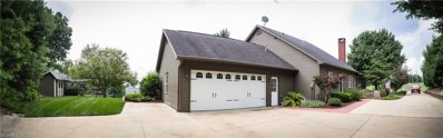 5440 Township Road 377, Millersburg, OH 44654 - #: 4029717