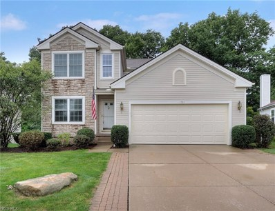1781 Bellaway Dr, Twinsburg, OH 44087 - #: 4031137