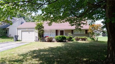 366 Rosemont Ave, Youngstown, OH 44515 - #: 4031349