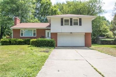 570 Niles Cortland Rd NORTHEAST, Warren, OH 44484 - #: 4031601