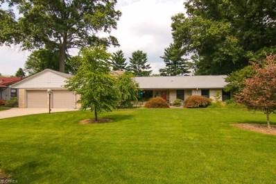 41 Lakeview Dr, Grafton, OH 44044 - #: 4033021