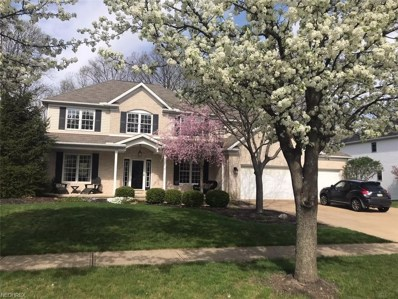 20154 Colleen Ct, Strongsville, OH 44149 - #: 4033101