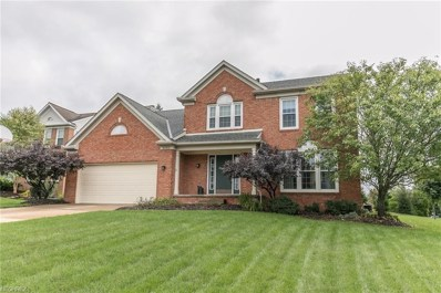 2182 White Marsh Dr, Twinsburg, OH 44087 - #: 4033311