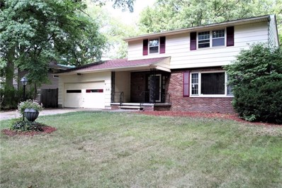 818 Red Hill Dr, Lorain, OH 44052 - #: 4033524