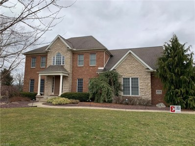 8034 Camden Way, Canfield, OH 44406 - #: 4034057